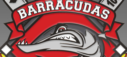 Sports Pin Design: Barracudas